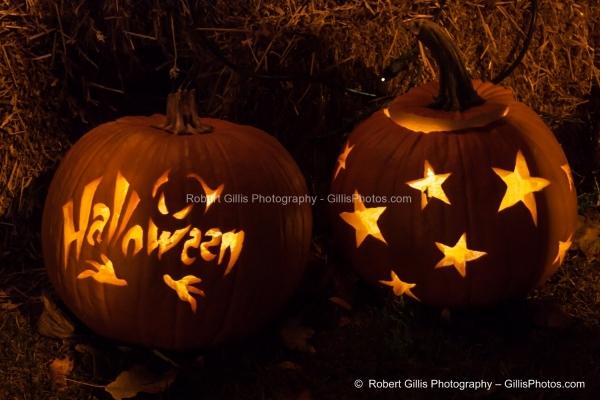 042 Ogunquit Halloween - Anchorage Pumpkins