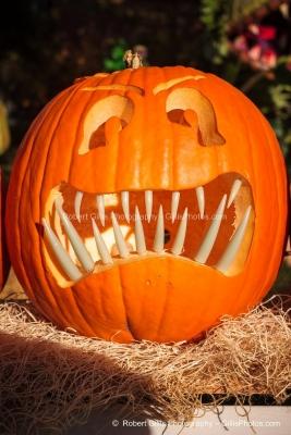 20 Ogunquit Halloween - Anchorage JackOLantern - Day